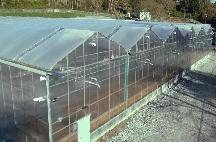 Invernadero con conductos para la recogida del agua de lluvia