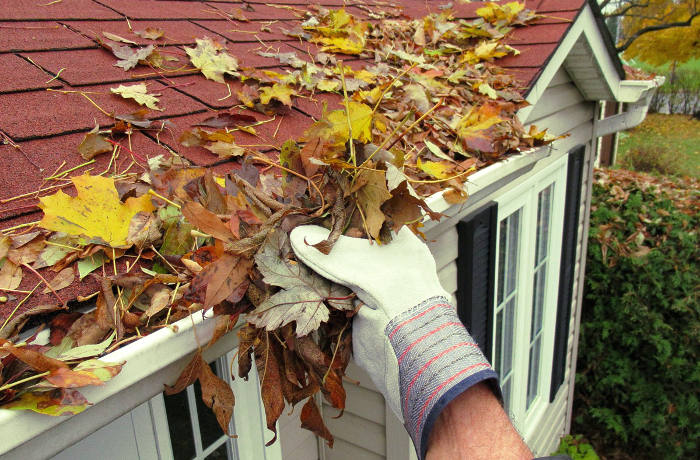 Canalón cuadrado con acumulación de hojas